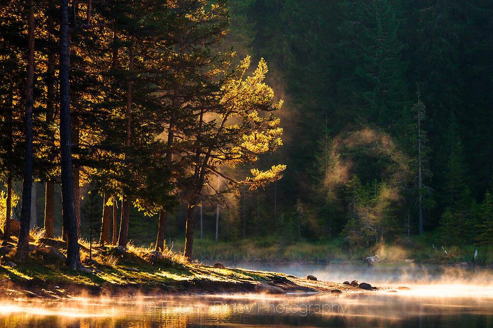 Лятно утро край езеро