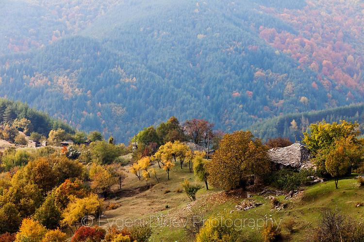 Махала високо в Родопите