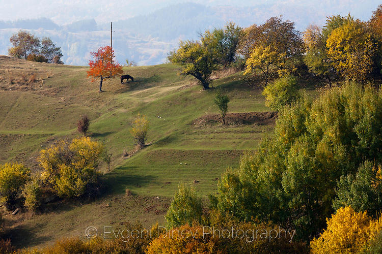 Из Родопа шета есента