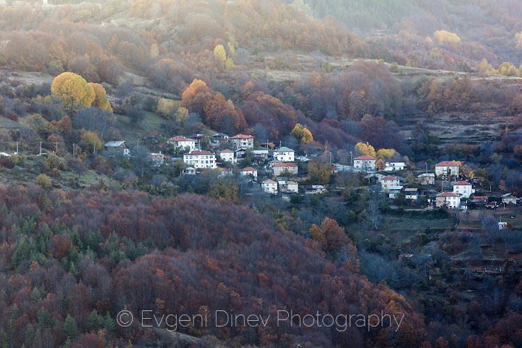Село Тикале