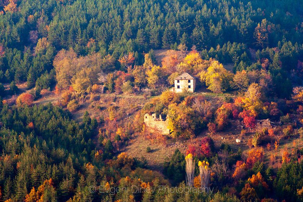 Родопска къща насред пъстра гора
