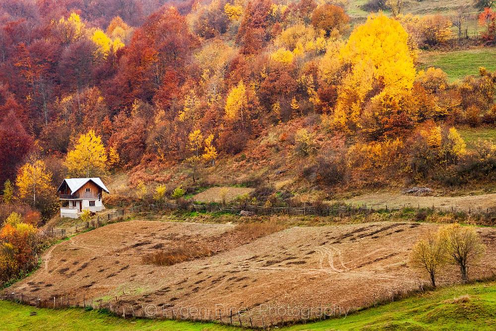 Малка родопска къща насред поляна