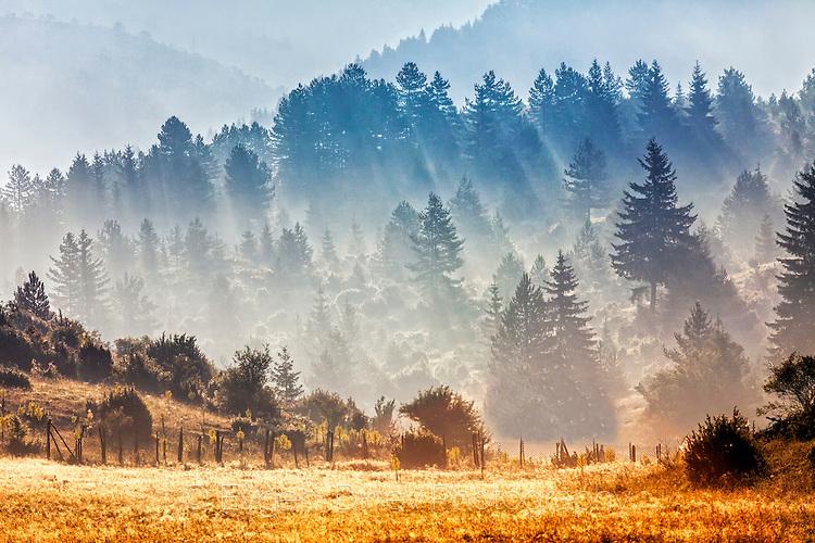Слънчево Родопско утро
