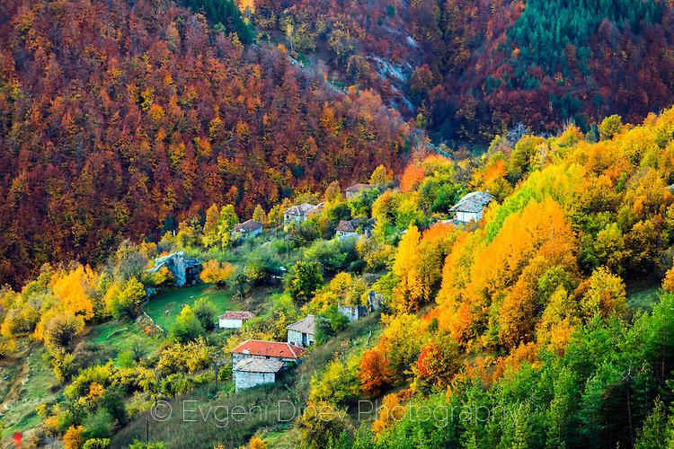 Свежо есенно утро в планината на Траките