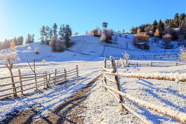 Подранила зима в Родопите