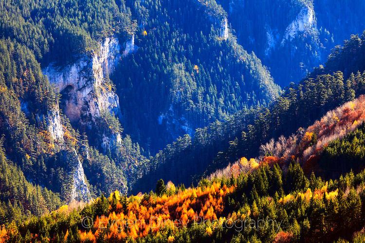 Слънчеви есенни Родопи