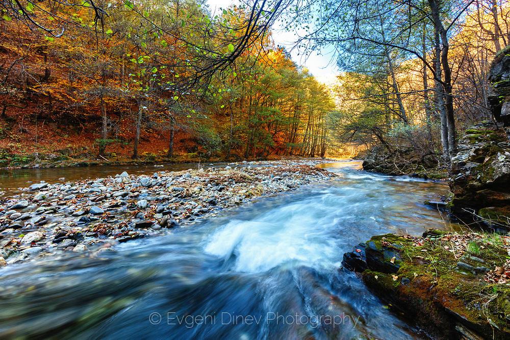 Буен поток в есенна гора