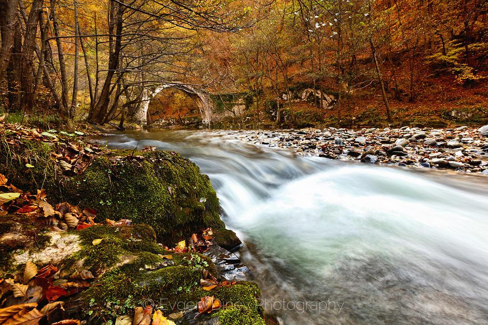 Римски мост дълбоков в родопската гора