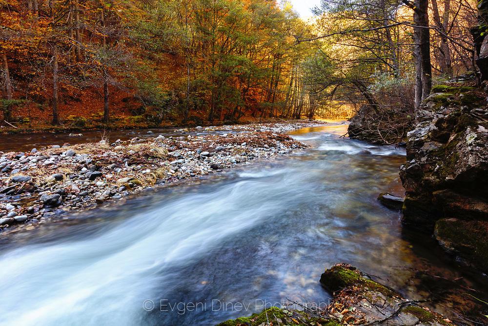 Бял поток в есенна гора