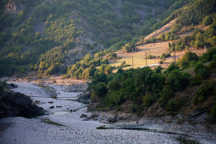 Река Боровица