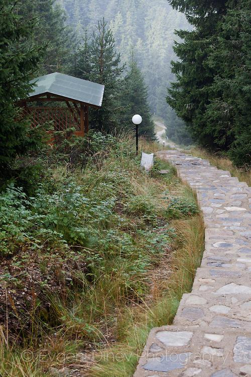 604 стълби към връх Свобода в Родопите