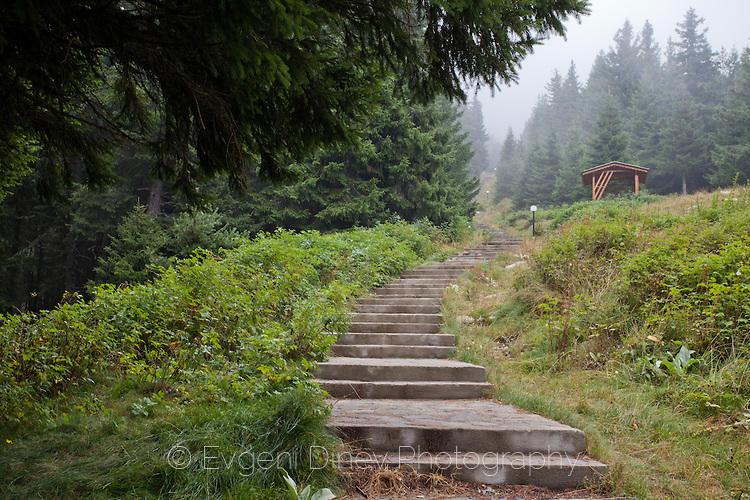 Стълби към връх Свобода