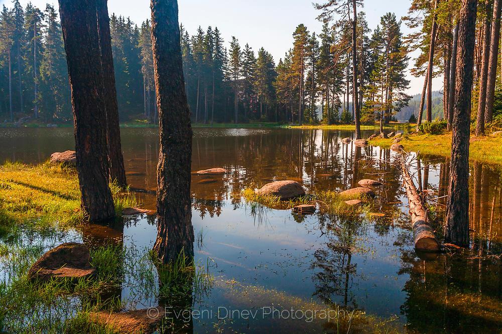 Лятно утро край язовир Широка поляна