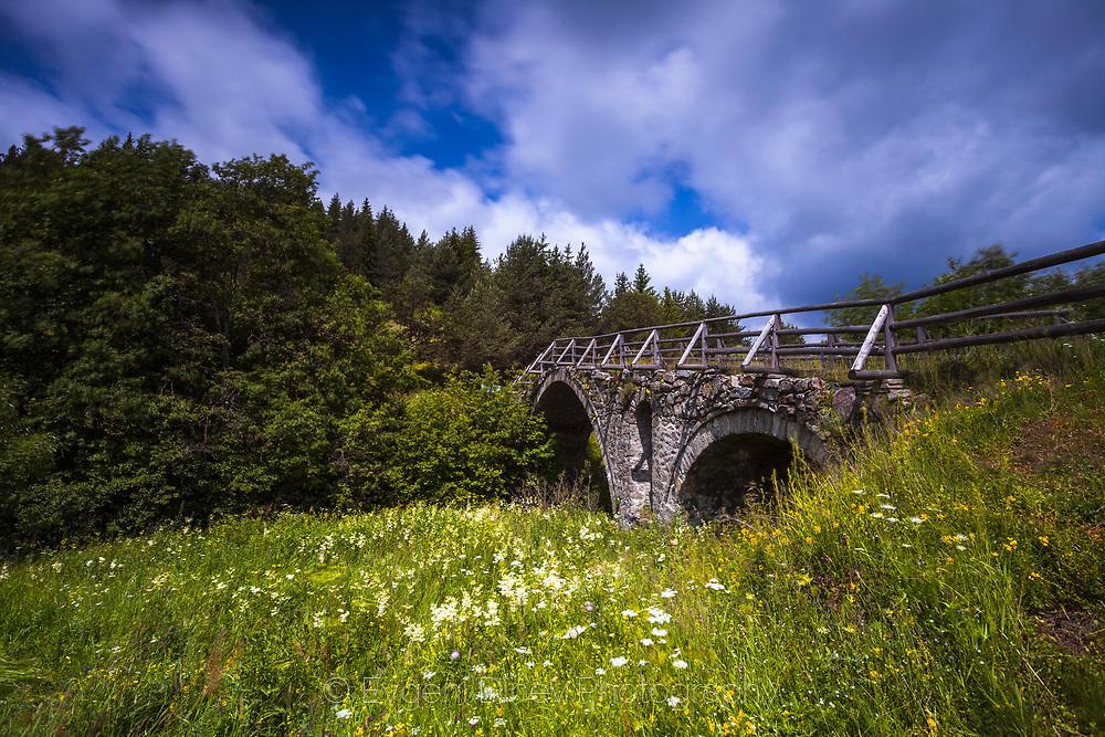 Отомански мост между Доспат и Змеица