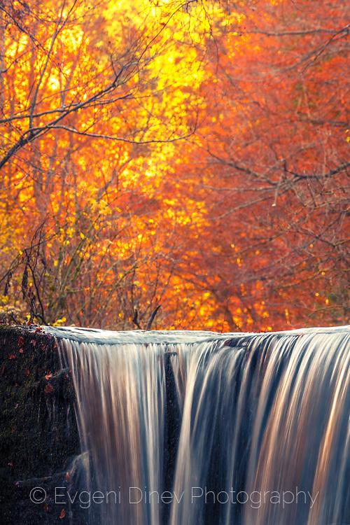 Сребърна река в огнена гора
