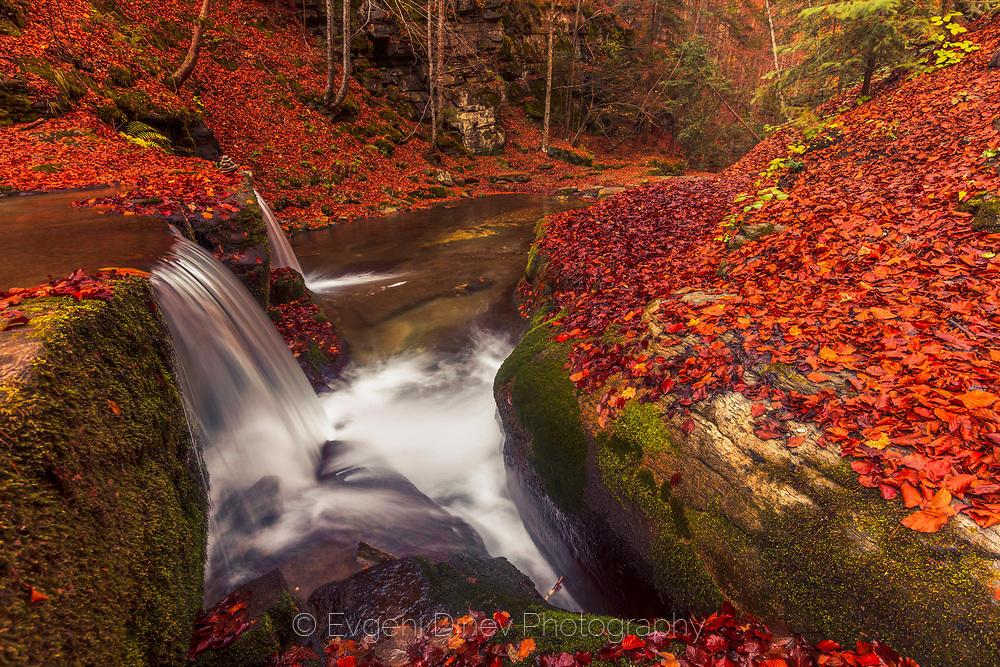 Бяла река насред червена гора