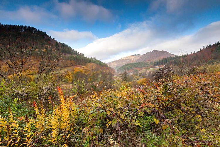 Есенна родопска гледка