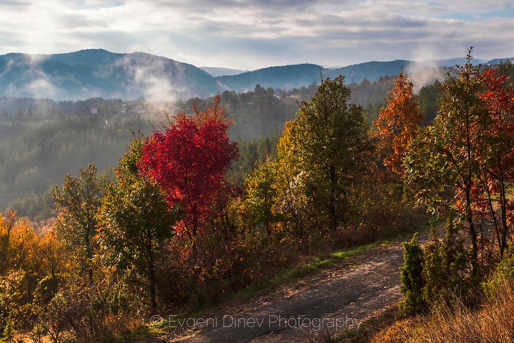 Над селски път между цветни есенни дървета