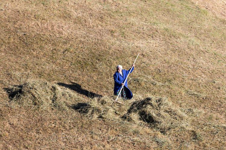 Жена от Гьоврен събира сено на полето