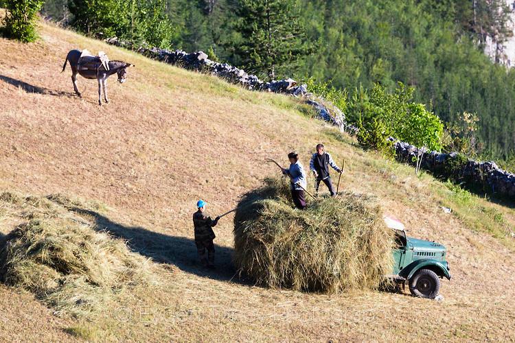 Събирачи на сено от Гьоврен