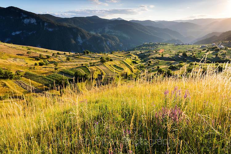Лято в Родопите