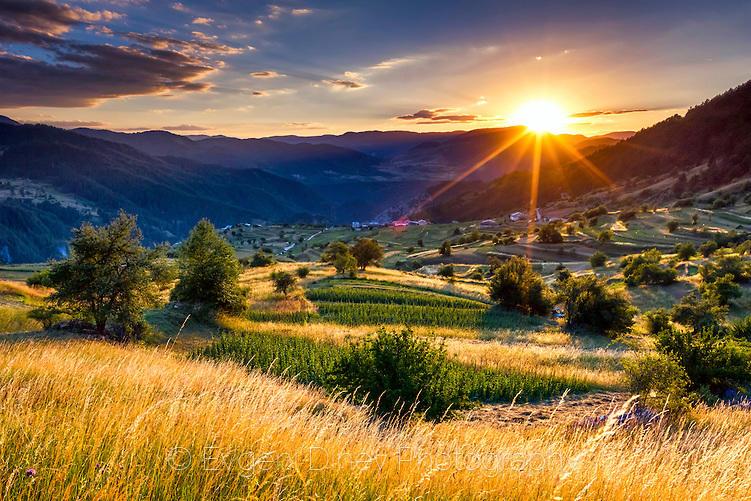 Родопско слънце