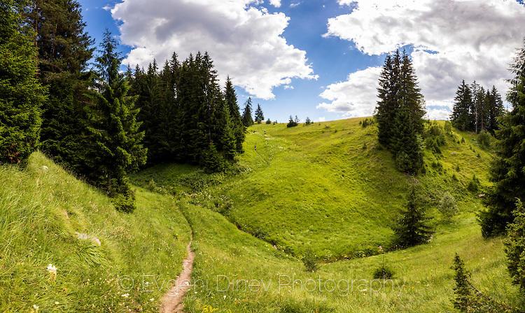 Зелени родопски пътеки