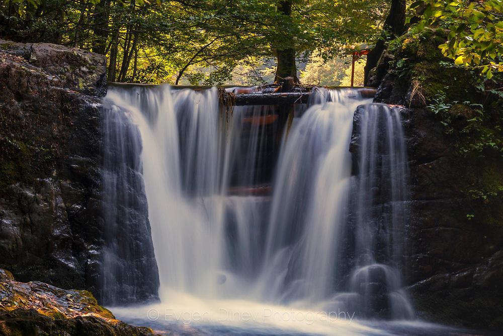 Водопад на река Костина, Рибарица