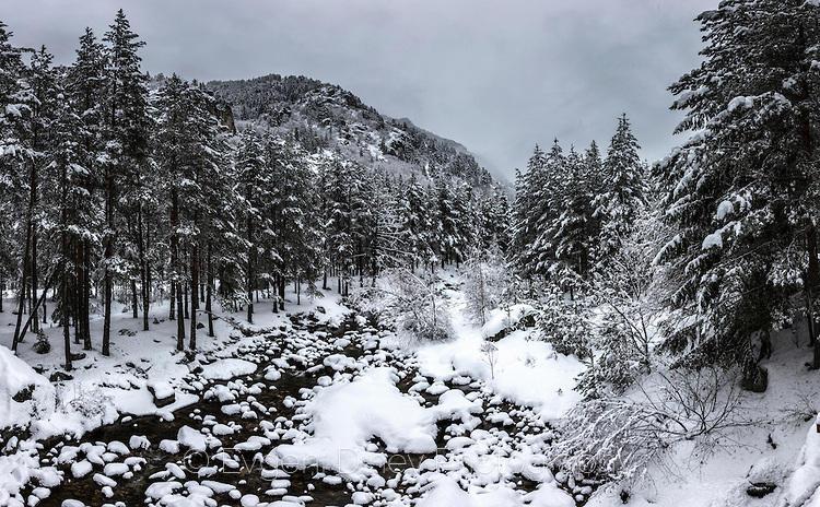 Река Бели Искър през зимата