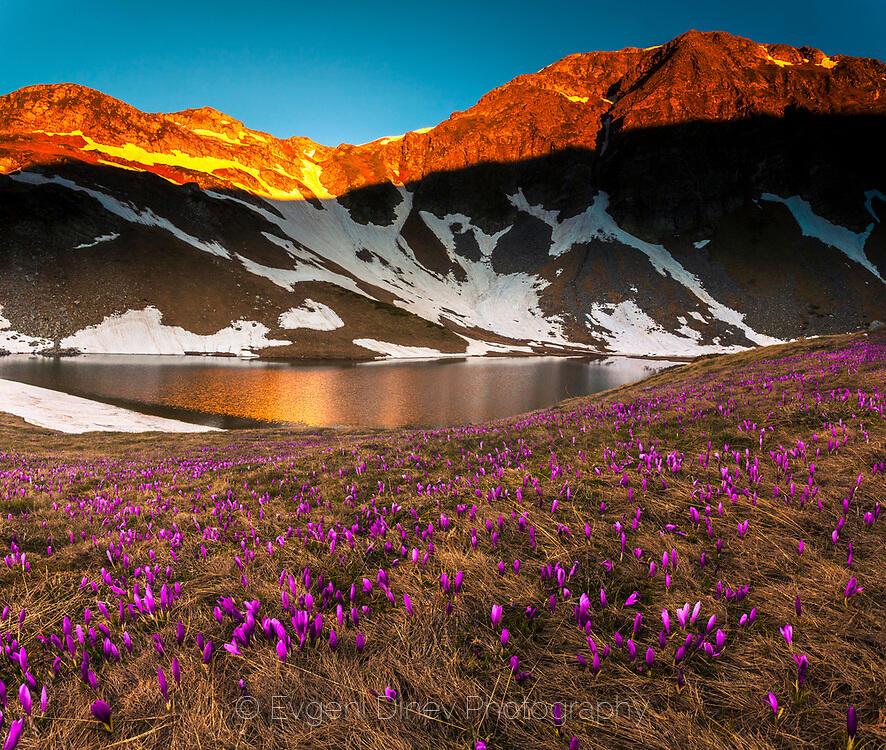 Пролетен изгрев в Рила