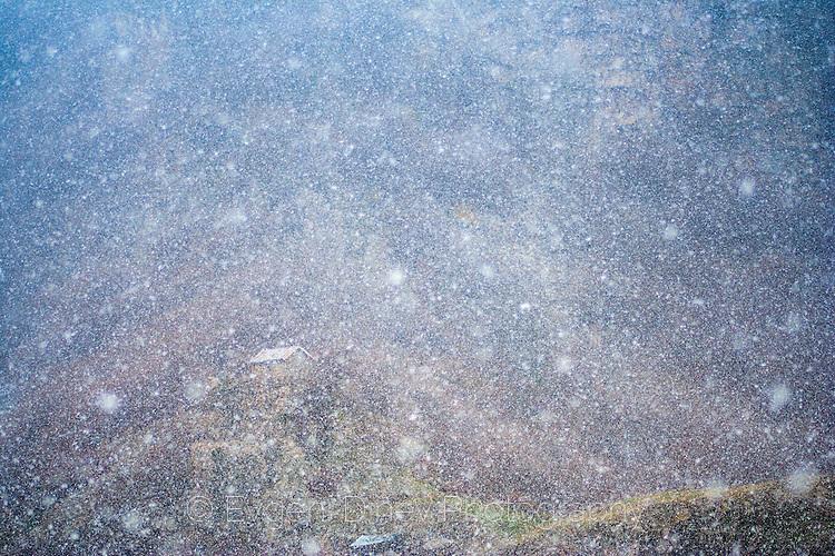Вали сняг