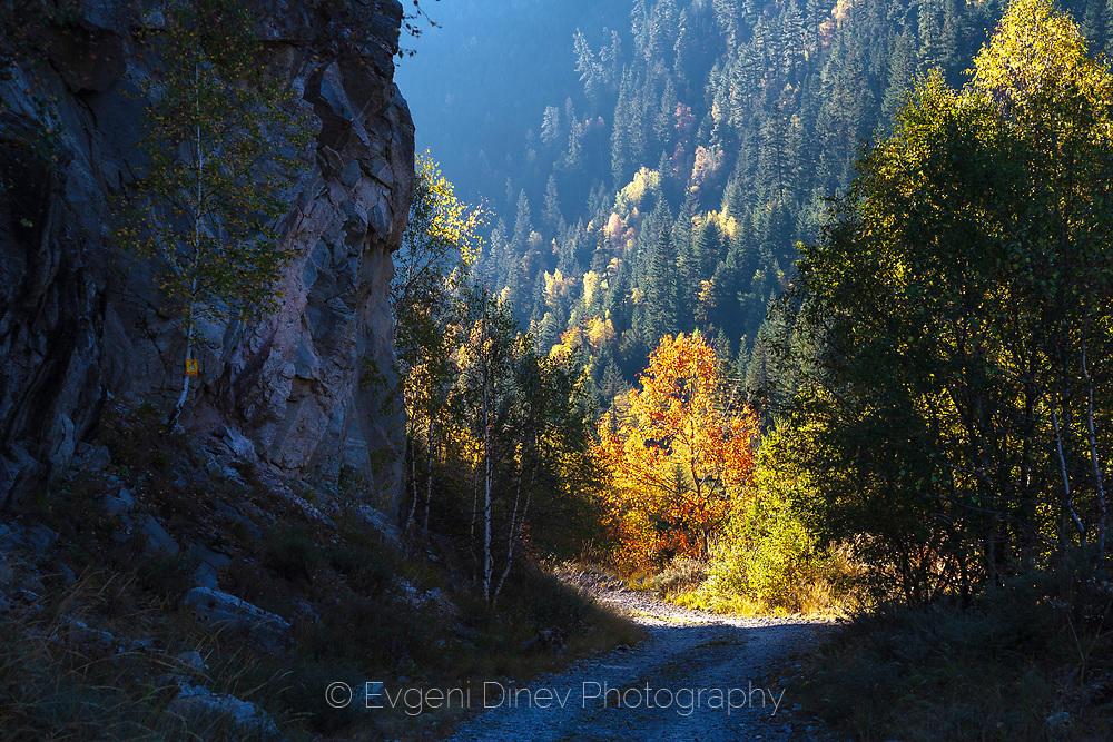 Слънчева рилска есен