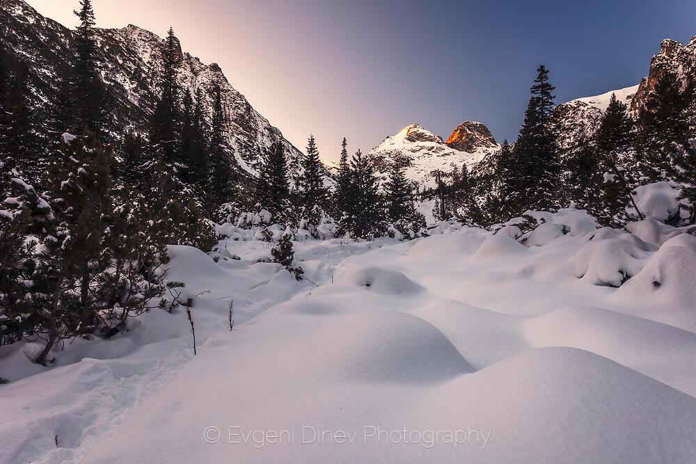 Сняг в планината