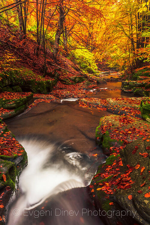 Тъмрашка река през есента