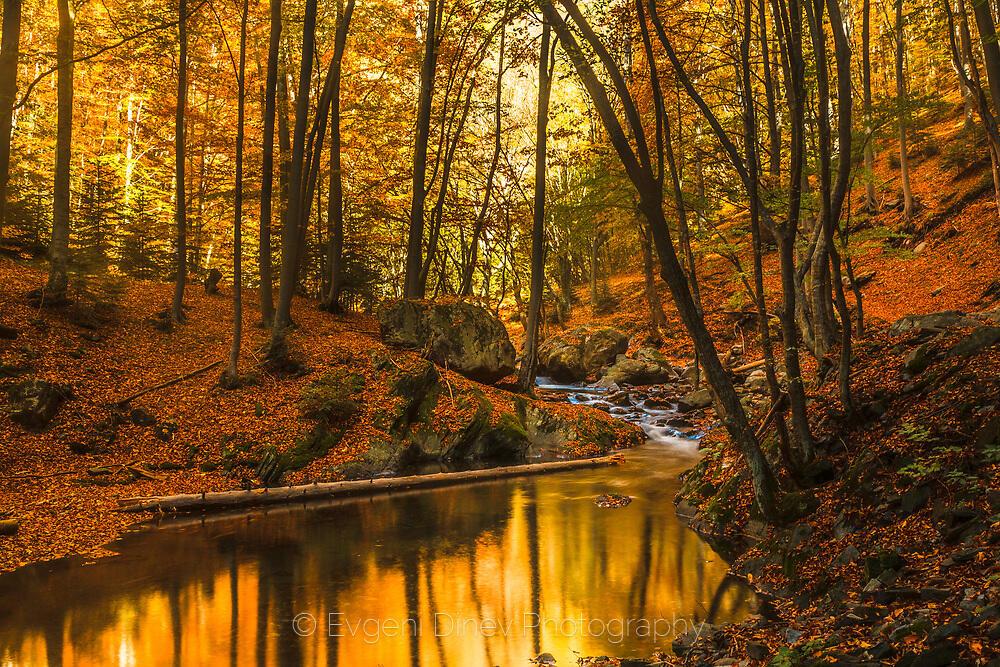 Есенен пейзаж с река в Стара планина