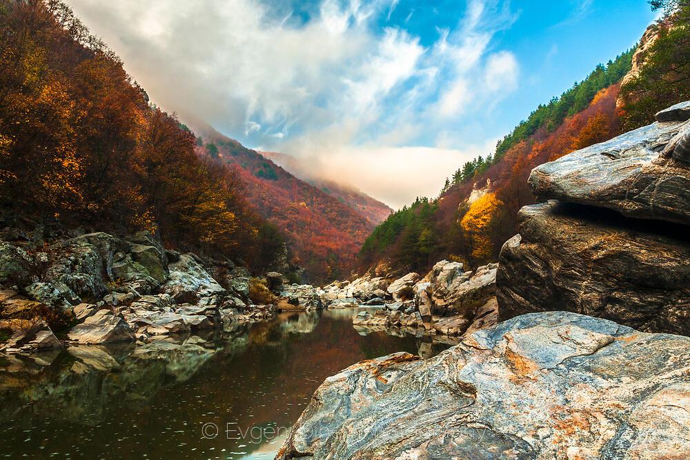 Есен на Арда