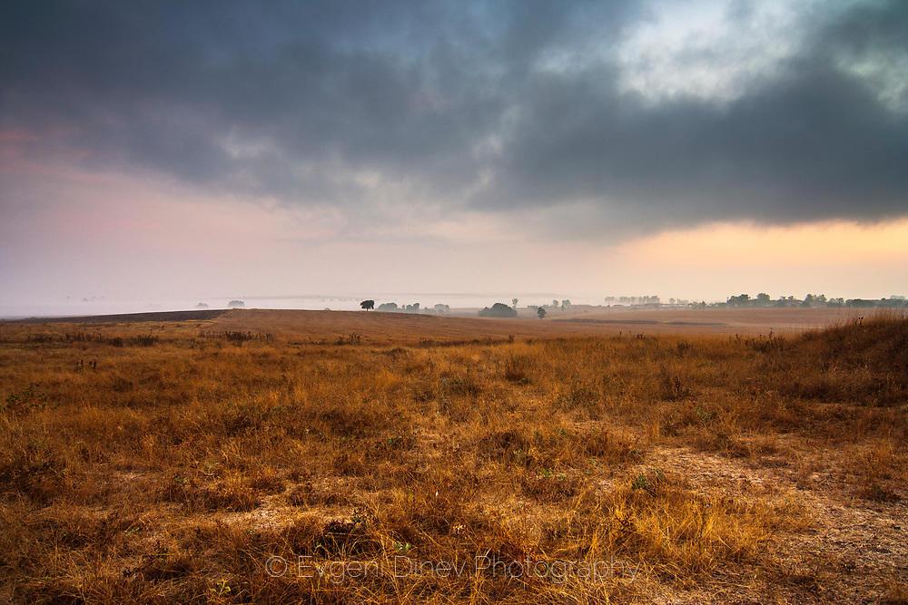 Мъгливи сакарски поля