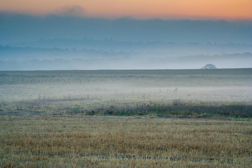 Лятна сакарска мъгла