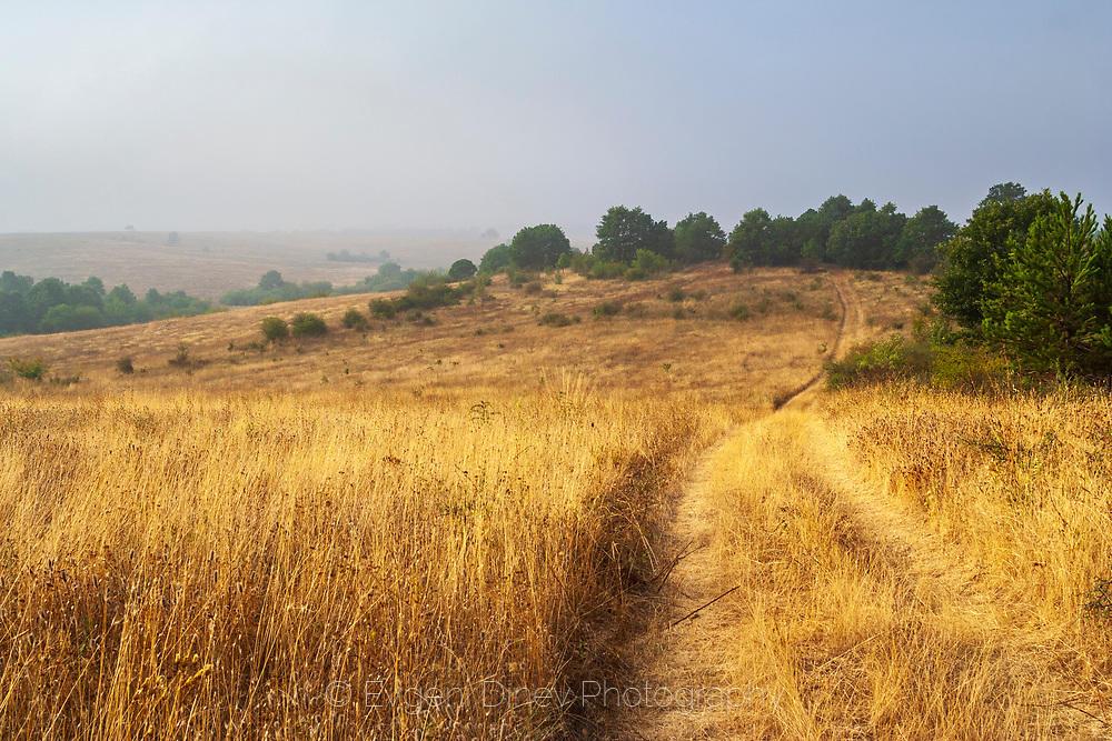 В мъглите на Сакар