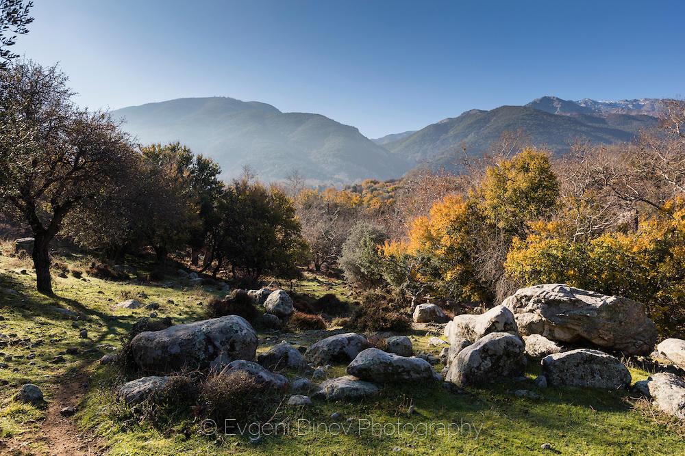 В полита на планината Саос в Самотраки