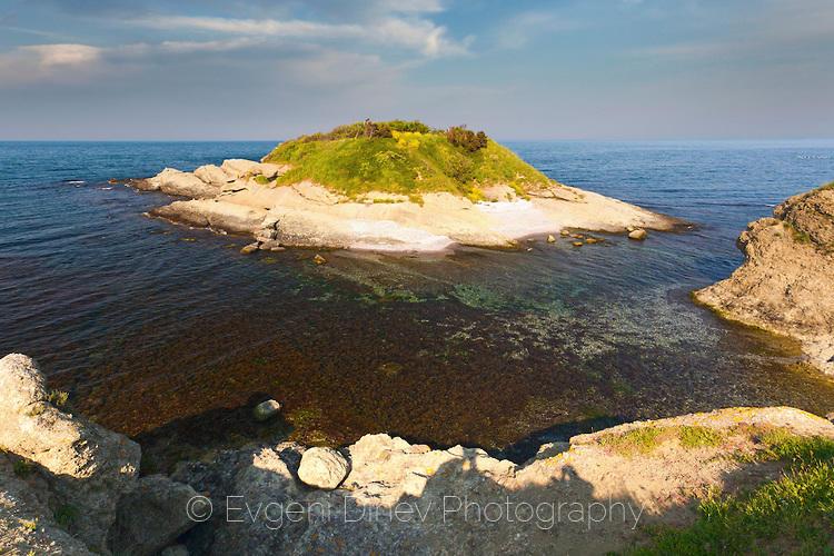 Остров Костенурката