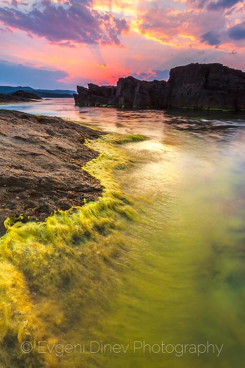 Зелен бряг