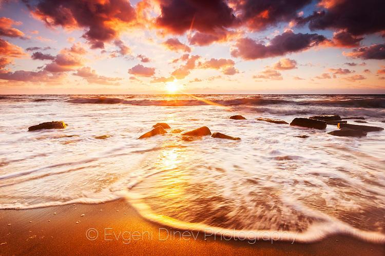 Златни вълни