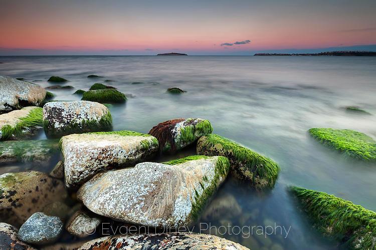 Скали покрити със зелени водорасли
