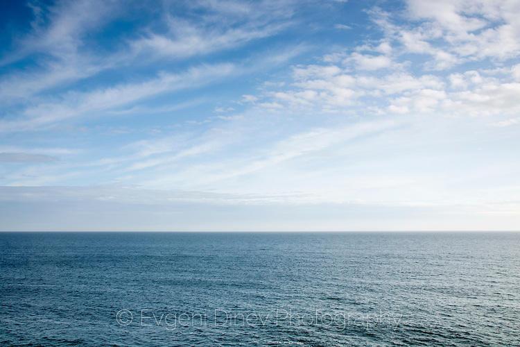 Морска шир