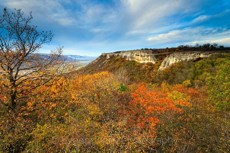 Провадийското плато на есен