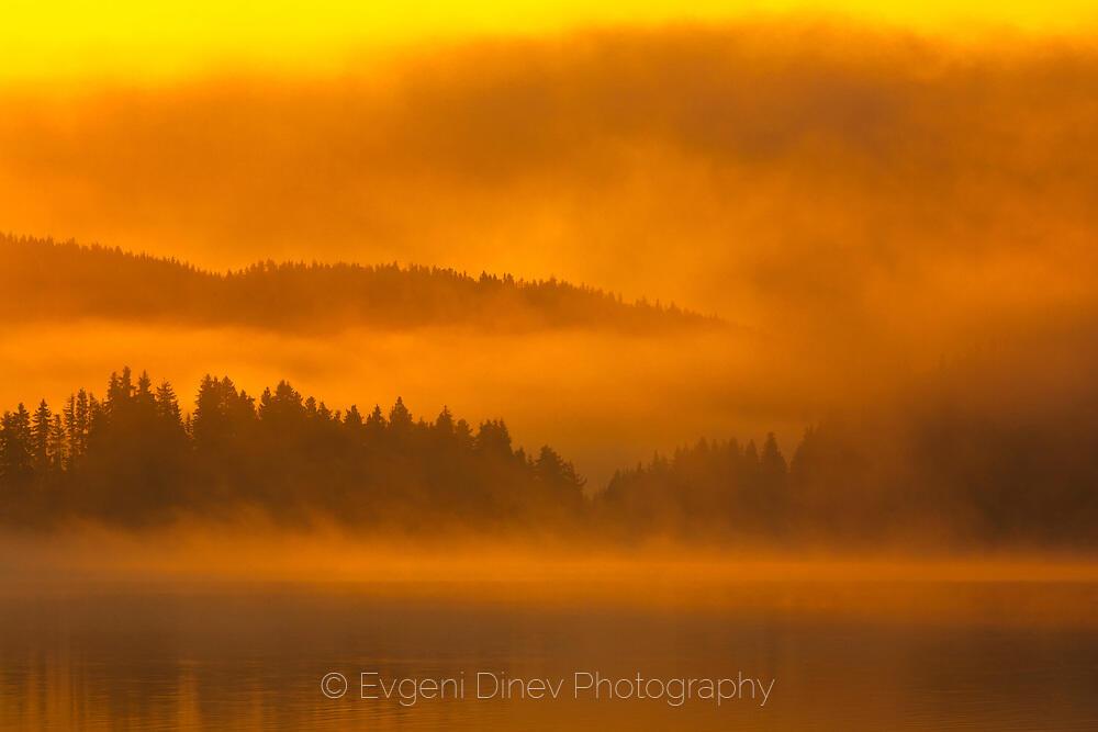 Оранжева мъгла