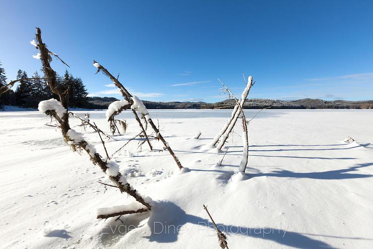 Скован в лед язовир