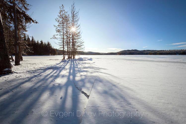 Сенки върху снега