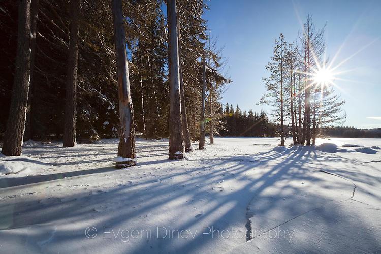 Зимен пейзаж от Широка Поляна